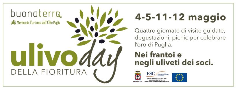 Ulivo Day, la primavera tra gli olivi!