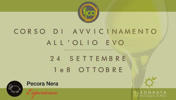 Corso di avvicinamento all'olio extravergine di oliva